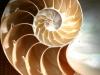Das globale Erwachen – Die (R)Evolution der (Bedingungslosen) Liebe – Teil 6: Der GöttlichePlan