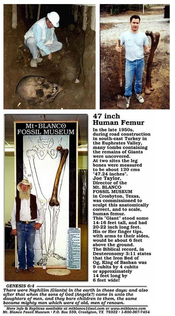 Ausgrabungen der Riesen