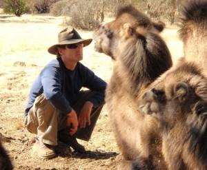 camel-herd-header2