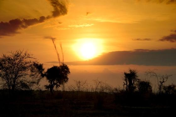 murchinson-falls-sunrise-uganda