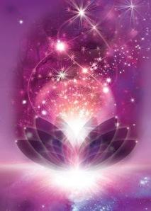cosmic_lotus