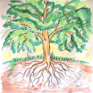 Baum 500px