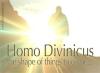 Homo Divinicus