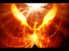 Der Phoenix, der nicht auferstehenwill