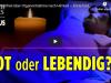 Die Wahrheit über Organentnahme nach Hirntod – Schweizer Ärzte fordern gesetzliches Verbot | ET imFokus