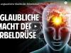 Die unglaubliche Macht der Zirbeldrüse – Prof. Dr. Dr. EnricoEdinger